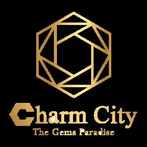 Dự án Charm City