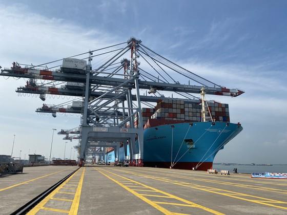 tàu container lớn cập cảng cái mép